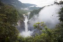 amazzonia, pantanal, mato grosso