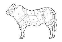 I tagli della carne bovina