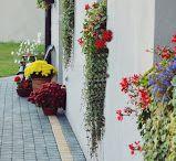 Garden ideas by Vintage Garden