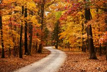 Fall's Great Color / There's no better place in the Midwest to welcome fall's great color than right here at Innsbrook!