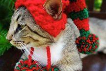gorros navidad