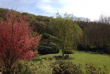 Jardin Le Clos du Hêtre, The Garden