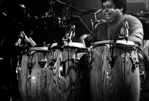 latin percussionists / by Martin Coady