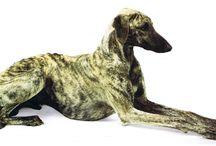 Sloughi - arabian hound