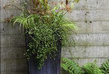Garden Decorating
