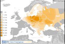 r1a1a7 Polish haplogroup (10 000 b.c.)