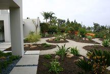 Santa Barbara Canyon Modern / garden design