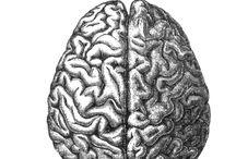 Alicia's Brain