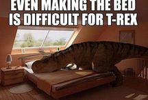 t-rex / Because t-Rex jokes crack me up :p