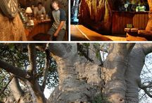 Interesting places in South Africa / Some of the coolest & interesting places in South Africa