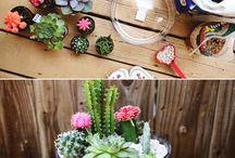Jardim / Idéias para fazer seu jardim