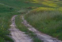 fields / a heaven for the heart...walking on field...enjoying the view..