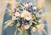 Chardons - Fleurs de mariage
