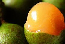 Exotic Fruits / Locally grown Barbados fruits, many of them with an exotic name and taste..