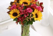 Sunflowers / Sunflowers are an uplifting choice in flower when it comes to choosing a cheerful arrangement to send.  / by Interflora - The flower experts