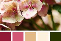 Kleurstellingen sprekend