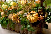pheasent decorarions / by Sheryl Faris