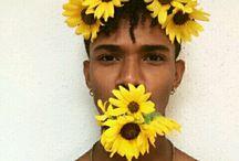 SUN N FLOWERS