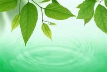 Scentsy Greens / These scents are the natural grasses, herbs, greens that give uncomplicated lightness to a fragrance mix.