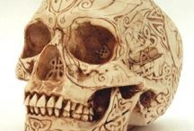 Skull - a- Riffic Finds / by Demona