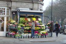 flower shop/studio