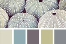 Palette / Colours to decorate