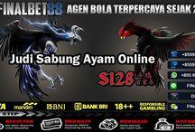 Agen Judi Online Sabung Ayam (S128) / Finalbet88 merupakan agen judi sabung ayam online yang telah mempercayakan kepada S128 menjadi situs main adu ayam resmi di Indonesia
