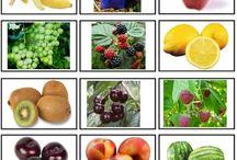 Ovoce / materiály do mateřské školy