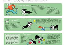 Doggie Infoboards