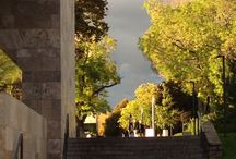 Autumnal scenery