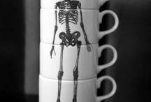 Anatomia Love