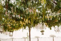 Floral Canopies and Halos / Floral canopies look gorgeous