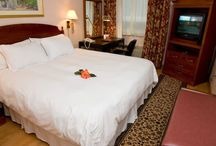 Rooms / We guarantee the best rates available directly through our website.