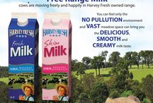 Milk / its a thing that comes out of cows and you can drink it
