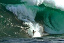 LETS SURF//