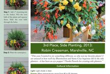 DIY! Pamela's Planter Pick of the Month / Want to try re-creating the same Living Walls and Side Planting creations that the contest winners did? Now you can with these step-by-step DIY directions!
