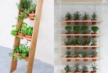 Garden inspiration ❤️