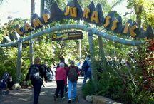 Universal Studios / by Shanna Saleh