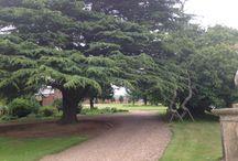 Parkland & Grounds