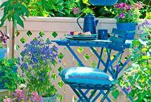 In the Garden / by Emilie Arnaud