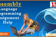 Experts for Assembly Language Assignment Help