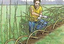 Gardening / outside