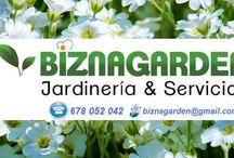 Servicios de jardineria Málaga / Corte de cesped, podas de palmeras y arboles, abonados, tratamientos fitosanitarios, desbroces, trasplantes,limpiezas,... www.biznagarden.com