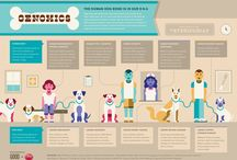 Dog Infographics