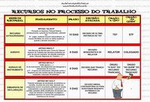 D. Processual do trabalho