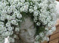Mi jardin inspirador