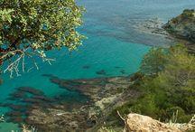 Cipro / L'isola di Afrodite, ricca di bellezze naturali e delle testimonianze di seimila anni di alternanza fra civiltà. Nessuna battaglia le ha tolto il fascino di un'isola bellissima.