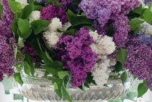 Boeketten / Boeketten met bloemen