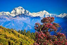 Vacance au Nepal, Circuit Nepal, Voyage au Nepal, Kathamndu