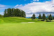 Belles photos de golfs